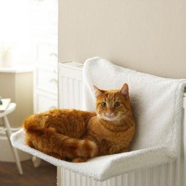 Para Descanso Gatos