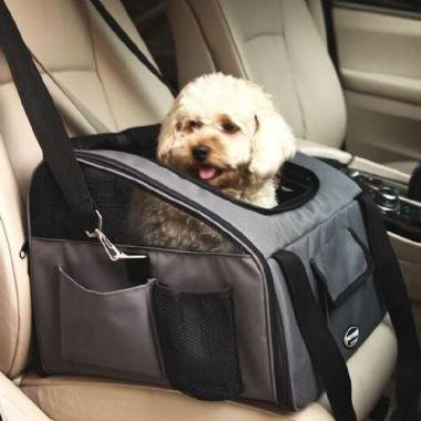 Para Transporte Perros